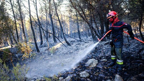 Лесной пожар во Франции - Sputnik Беларусь
