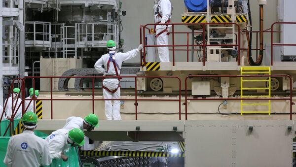 Загрузка ядзернага паліва на першым энергаблоку БелАЭС - Sputnik Беларусь
