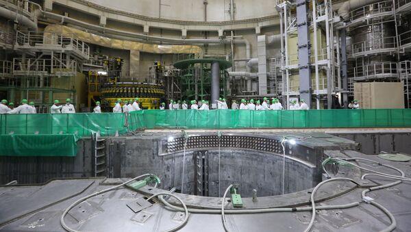 На первом энергоблоке Белорусской АЭС началась загрузка ядерного топлива - Sputnik Беларусь