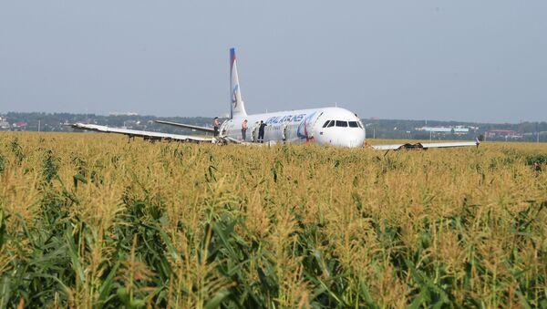 Подготовка к вывозу Airbus A321 с места ЧП - Sputnik Беларусь