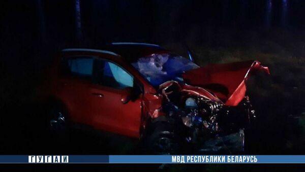 Под Минском в автокатастрофе с участием лося погибли три человека - Sputnik Беларусь