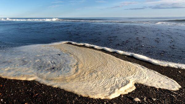 Пена на беразе Халактырскага пляжа на паўвостраве Камчатка - Sputnik Беларусь