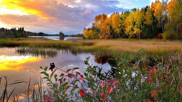 Восеньскі пейзаж - Sputnik Беларусь
