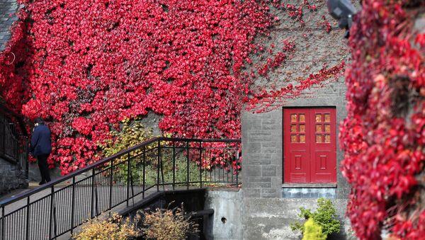 Вид на здание шотландской винокурни Blair Athol, покрытое осенней листвой - Sputnik Беларусь