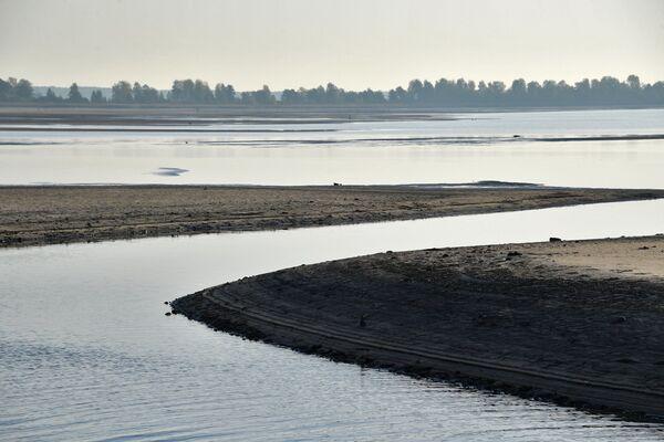 Опытный рыбхоз Селец расположен у одноименного водохранилища. - Sputnik Беларусь