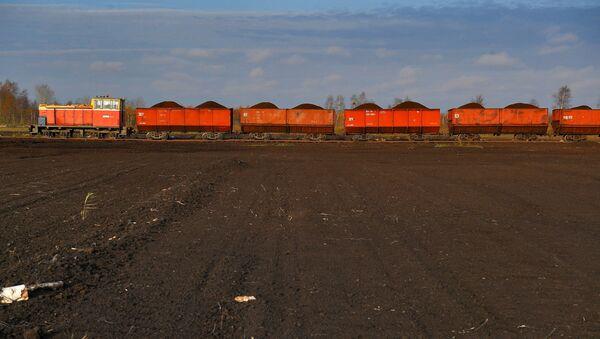Узкоколейка, по которой доставляют торф на Житковичский торфобрикетный - Sputnik Беларусь