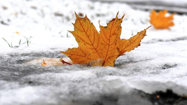 Первый снег, архивное фото - Sputnik Беларусь
