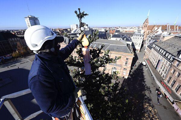 Рабочы ўсталёўвае агні на калядную елку ў Страсбургу - Sputnik Беларусь