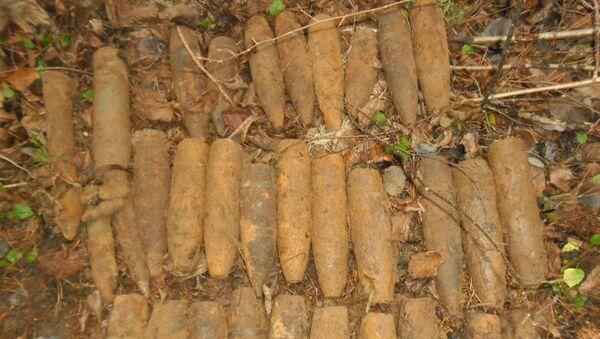 Найденные боеприпасы - Sputnik Беларусь