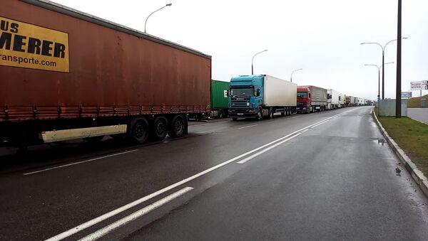 Как собаке надо стоять на дороге: что происходит на границе с Литвой  - Sputnik Беларусь