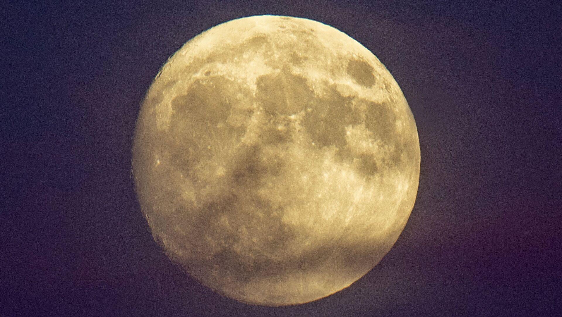 Бобровая Луна 2020 года - Sputnik Беларусь, 1920, 23.04.2021