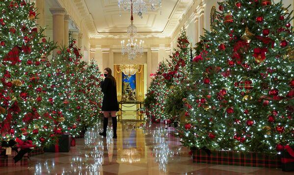 Рождественская декорация Белого дома  - Sputnik Беларусь