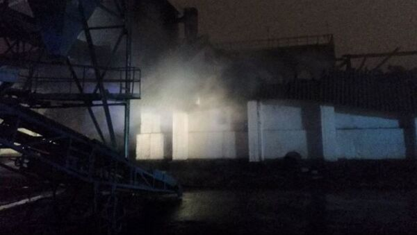 Пожар на складе ОАО Брестхлебопродукт - Sputnik Беларусь