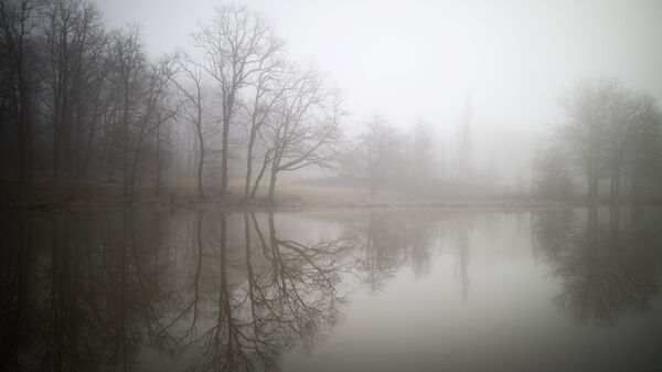 Туман, архіўнае фота - Sputnik Беларусь