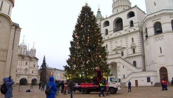Як выглядае галоўная елка Расіі на Саборнай плошчы - відэа - Sputnik Беларусь