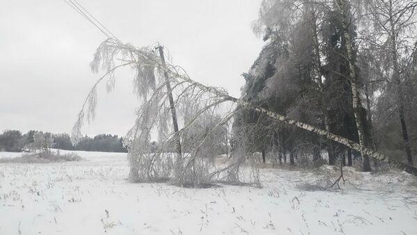 Более 80 населенных пунктов Витебской области остались без света - Sputnik Беларусь