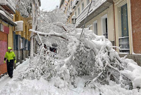 Последствия сильного снегопада в Мадриде - Sputnik Беларусь
