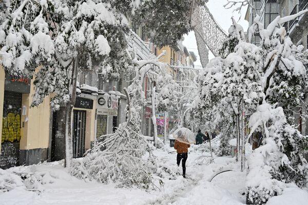 Упавшие заснеженные ветки деревьев на улицах Мадрида - Sputnik Беларусь