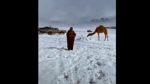 Рэдкае відовішча: у пустыні Сахара выпаў снег - Sputnik Беларусь