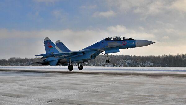 Сопка, Сушка і Праціўнік: як беларускае войска асвойвае ўзбраенне з РФ - Sputnik Беларусь