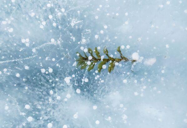 Практычна паўгода самае глыбокае возера на планеце знаходзіцца ў замёрзлым стане. - Sputnik Беларусь