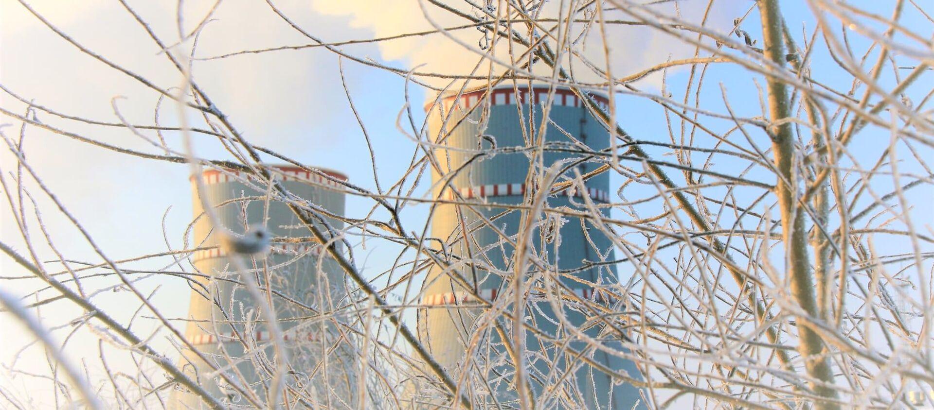БелАЭС зимой - Sputnik Беларусь, 1920, 07.03.2021