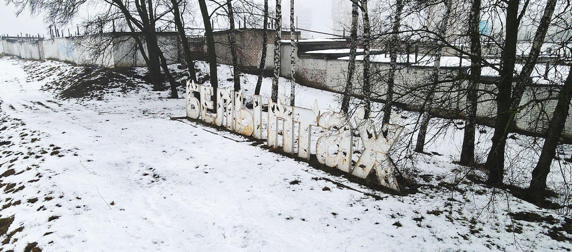 Куды знік з набярэжнай арт-аб'ект Белы птах? - відэа - Sputnik Беларусь, 1920, 05.02.2021