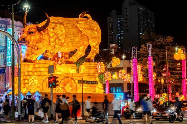 Светлавая скульптура Металічнага быка ў кітайскім квартале Сінгапура - Sputnik Беларусь