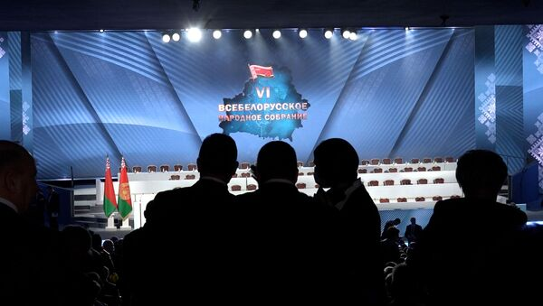 ВНС и многовекторность Беларуси глазами российских политиков и дипломатов - видео - Sputnik Беларусь