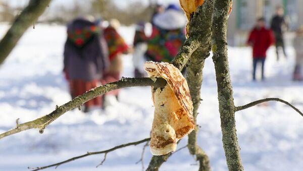 Блины на деревьях растут? Как выглядит обряд Громницы в белорусской деревне - Sputnik Беларусь