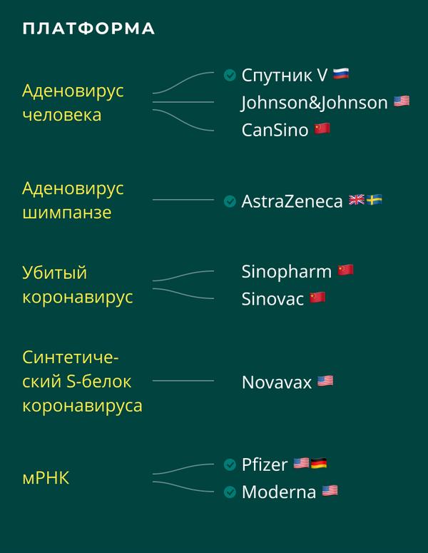 Вакцины от COVID-19: на каких платформах основаны вакцины - Sputnik Беларусь