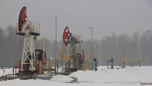 Беларускія нафтавікі пачалі бурыць новыя свідравіны на Палессі - Sputnik Беларусь