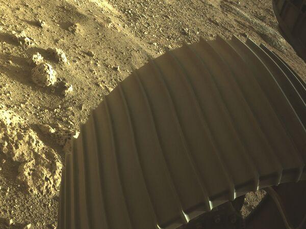 Фото колеса Perseverance и поверхности рядом с ровером - Sputnik Беларусь