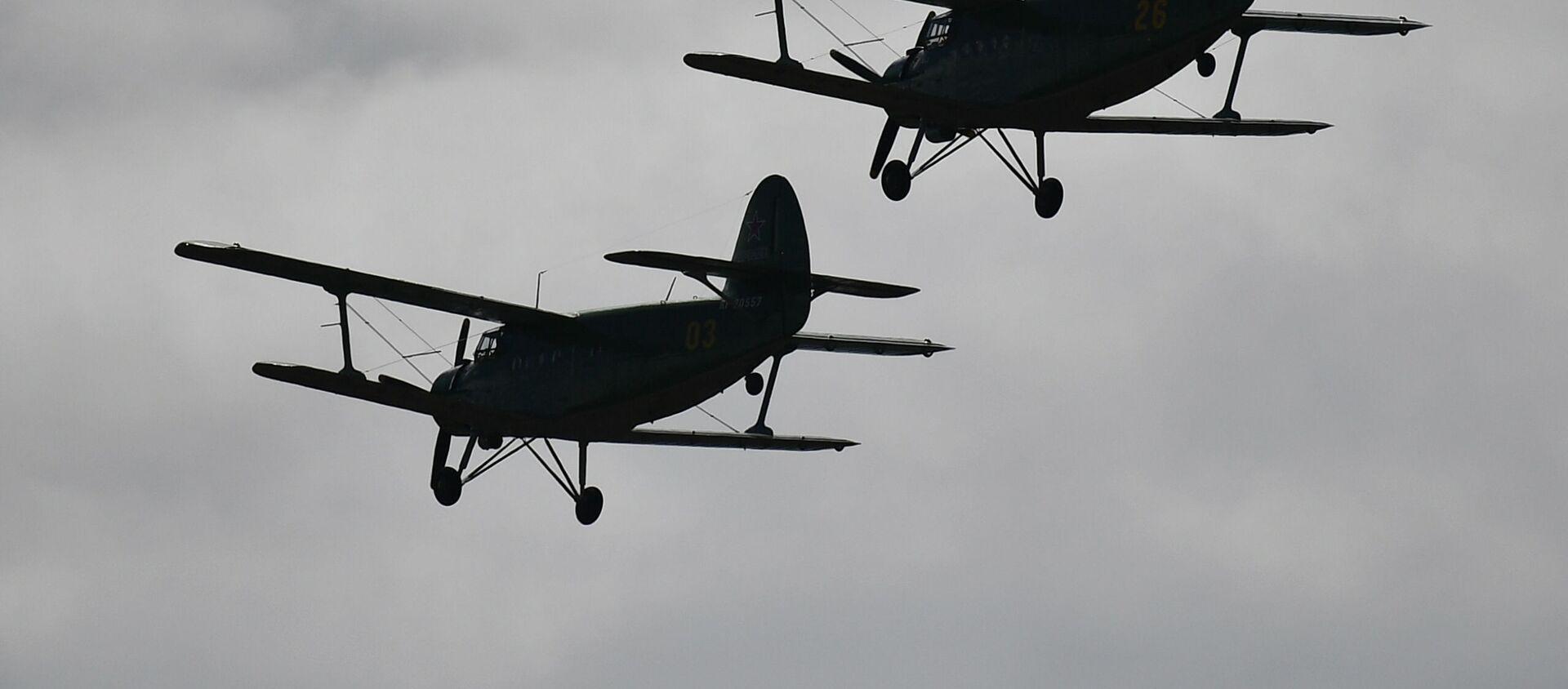 Самолеты Ан-2 (кукурузник) - Sputnik Беларусь, 1920, 27.02.2021