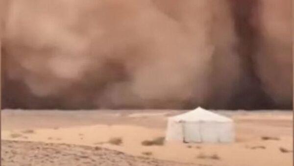 Сильнейшая песчаная буря накрыла страны Персидского залива – видео - Sputnik Беларусь