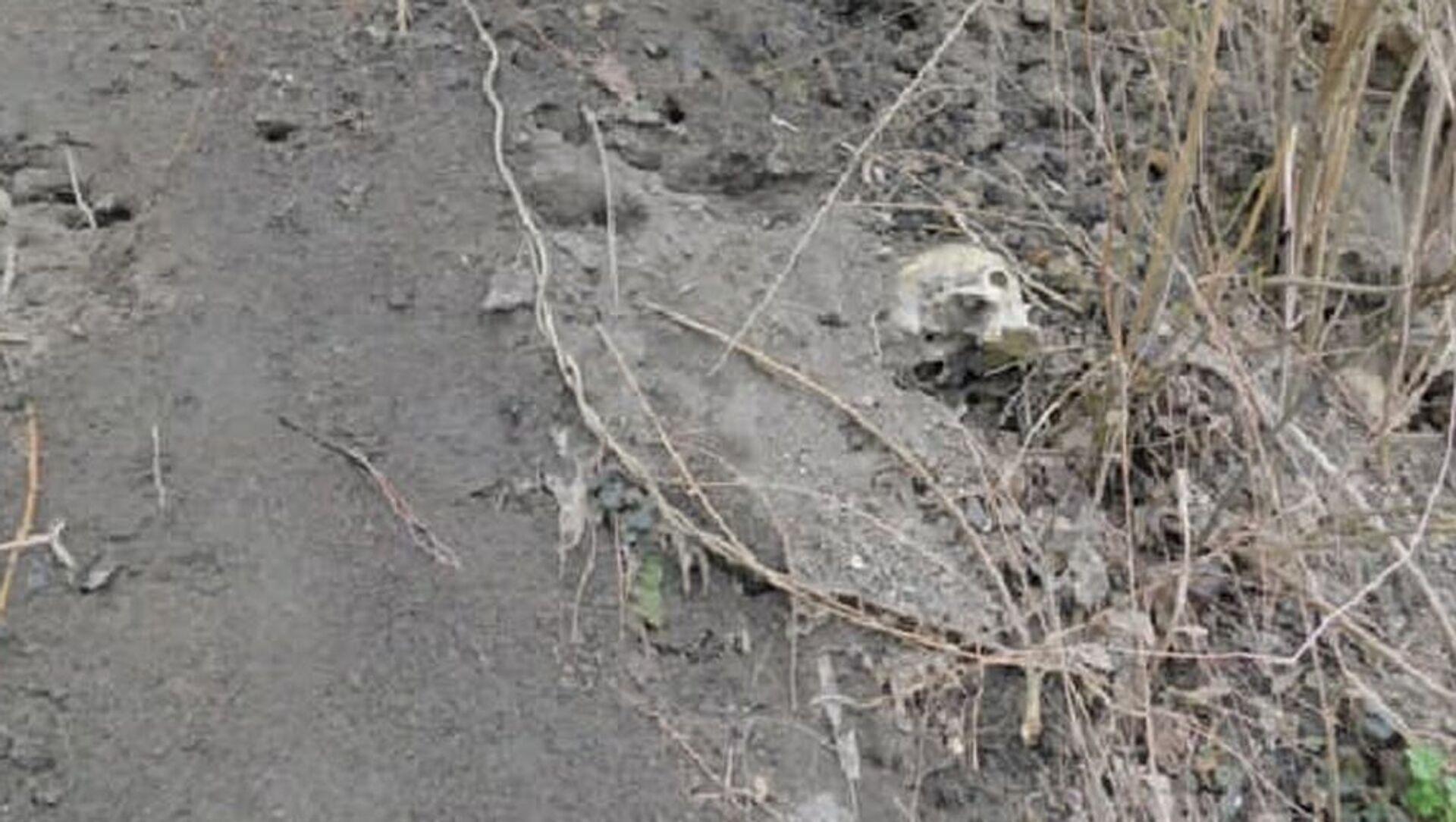 Человеческие кости нашли на территории Брестской крепости - Sputnik Беларусь, 1920, 16.03.2021