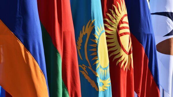 Планы антыманапольнага блока ЕЭК на 2021 год – відэа - Sputnik Беларусь