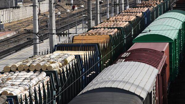 Таварныя цягнікі на станцыі РЖД  - Sputnik Беларусь