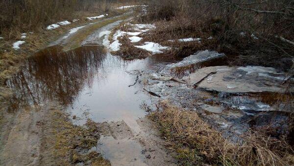 Разлившаяся речка Ордышевка - Sputnik Беларусь