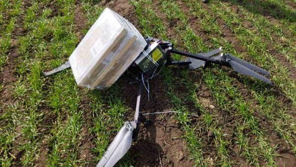 Белорусские пограничники сбили самодельный дрон в Брестском районе - Sputnik Беларусь