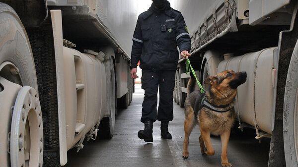 Кинолог со служебной собакой досматривают груз - Sputnik Беларусь