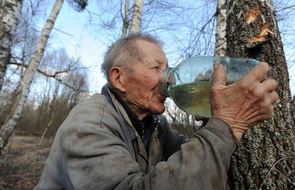 Мужчина пьет березовый сок в Тонежском лесничестве - Sputnik Беларусь