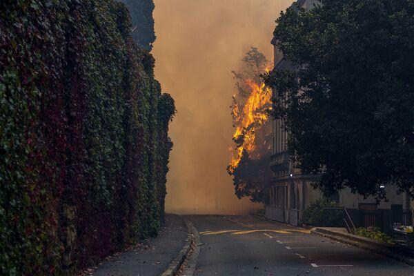 Горящее из-за пожара на горе Столовая здание на территории Университета Кейптауна, ЮАР - Sputnik Беларусь