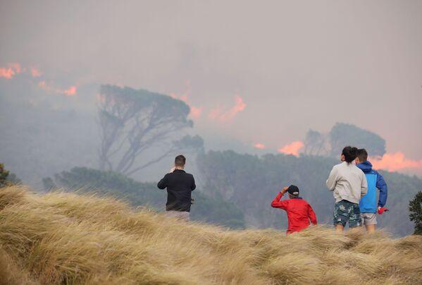 Местные жители наблюдают за лесным пожаром на склонах горы Столовая в Кейптауне, ЮАР - Sputnik Беларусь
