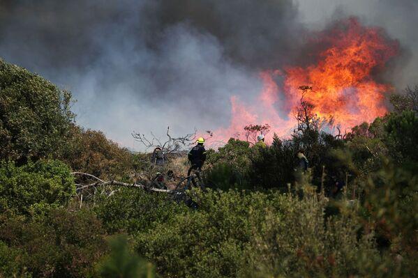Тушение природного пожара в Кейптауне  - Sputnik Беларусь