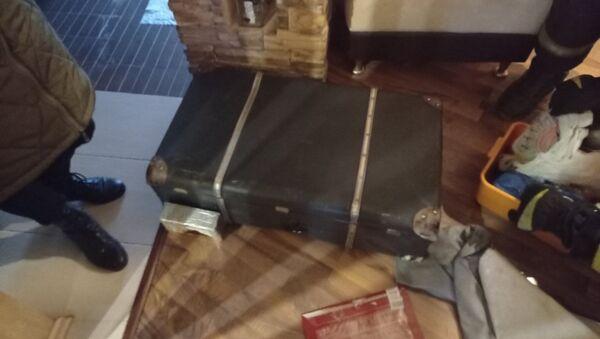 Вызвавший переполох чемодан - Sputnik Беларусь