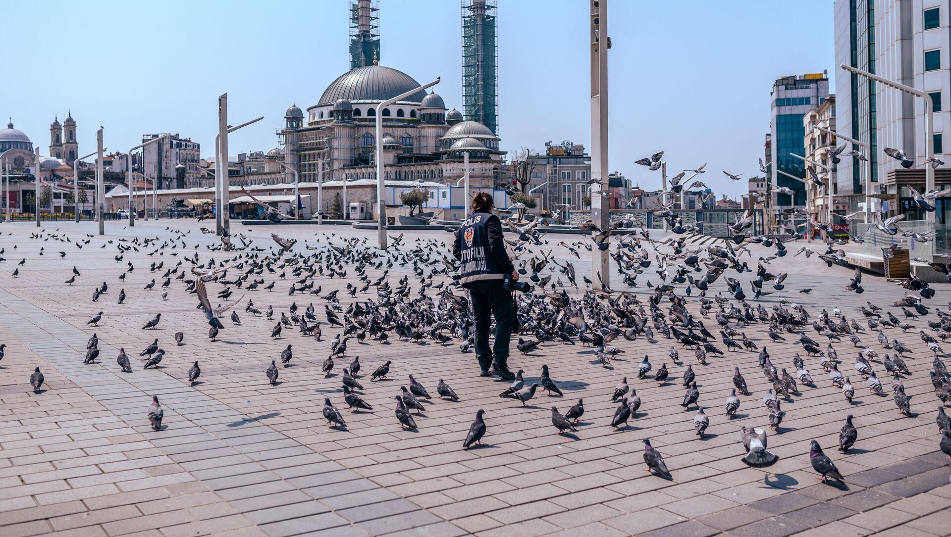 Турецкая полиция кормит голубей на площади Таксим в Стамбуле - Sputnik Беларусь, 1920, 27.04.2021