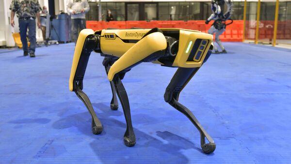 Полиция Нью-Йорка уволила со службы собаку-робота - Sputnik Беларусь