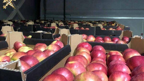 Белорусская таможня задержала более 80 тонн польских яблок, которые незаконно доставлялись в Москву - Sputnik Беларусь