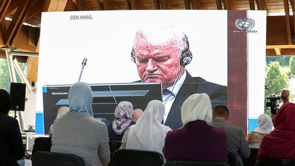 Трансляция заседания в Гааге - Sputnik Беларусь